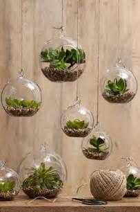 hanging herb garden indoor ogr 243 d kreatywny czyli rośliny w mieszkaniu jak je