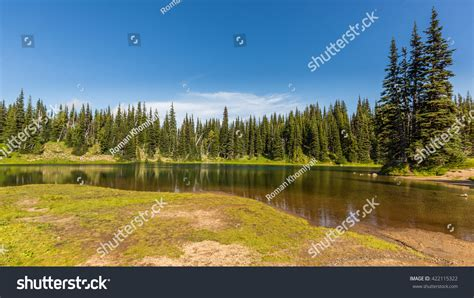 Clear Lake In The Forest Clear Forest Lake Mountains Mount Rainier Stock Photo