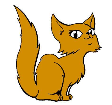 gatta persiana disegno gatta persiana colorato da utente non registrato