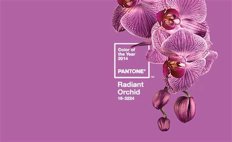 what color match purple collage 2 radiant orchid purple color practical orchid makeup