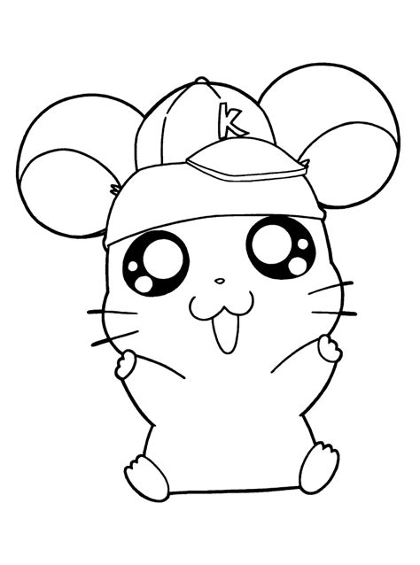 cute hamster coloring pages printable cute hamtaro coloring pages coloring page hamster in
