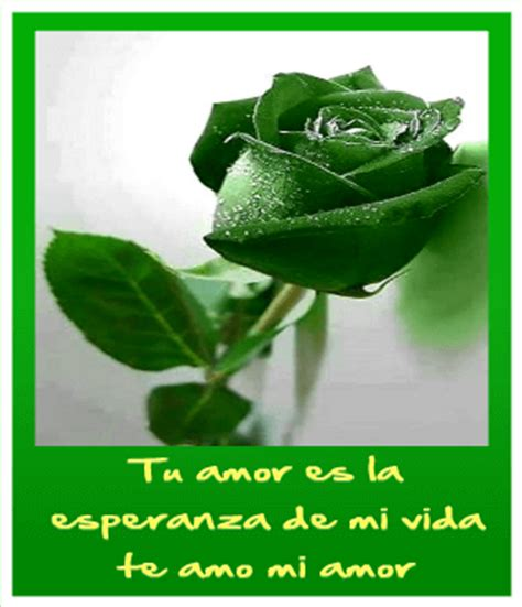 imagenes verdes hermosas im 225 genes de rosas verdes hermosas para desear esperanza y
