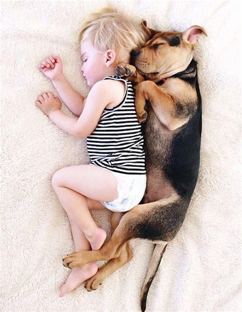 puppy nap 2 months later this toddler is still napping with his puppy bored panda