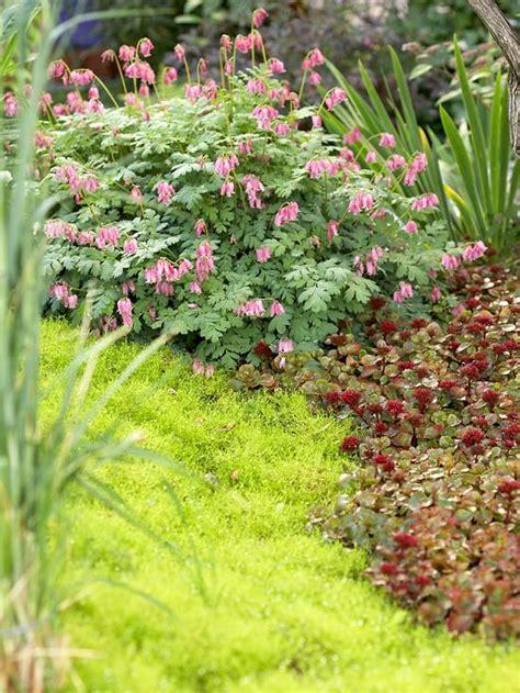 garten anpflanzen tipps f 252 r individuelles garten design und auff 228 llige