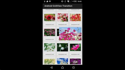 android transition android transition for gridview image gallery