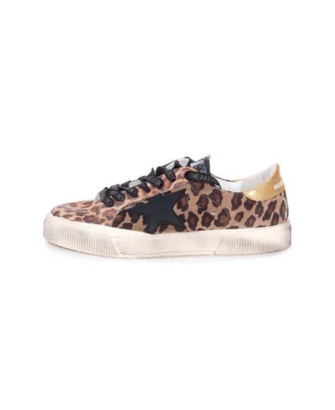 leopard print canvas sneakers golden goose deluxe brand may leopard print canvas low top