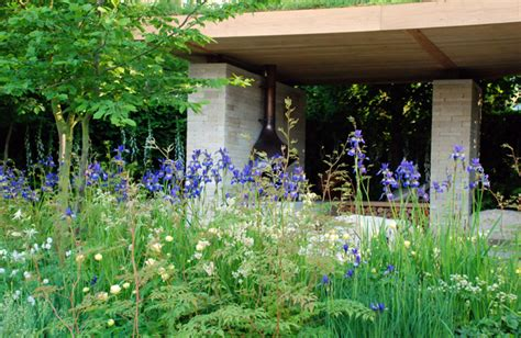 Cox At Chelsea Flower Show by Rhs Chelsea 2014 The Homebase Garden Time To Reflect