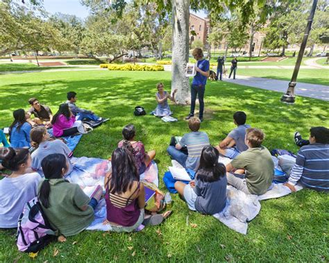 Ucla Mba Electives by Essay For College Creative Writing Graduate Program