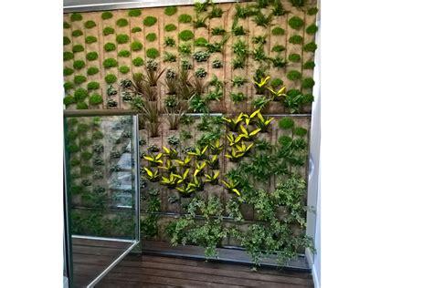 giardino verticale interno giardino verticale indoor pellegrini giardini