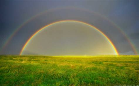 Rainbow Of in the mystical world of a rainbow scientia