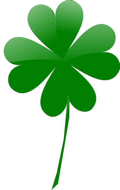 small leaved shamrock free pictures shamrock 31 images found