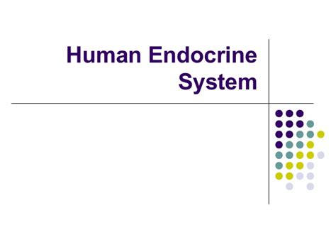Human Endocrine System Endocrine System Powerpoint