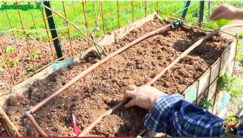 irrigazione per giardino irrigazione giardino verticale muri verticali come