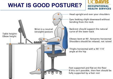 ergonomic sitting at desk office ergonomics tips and best practices ucop