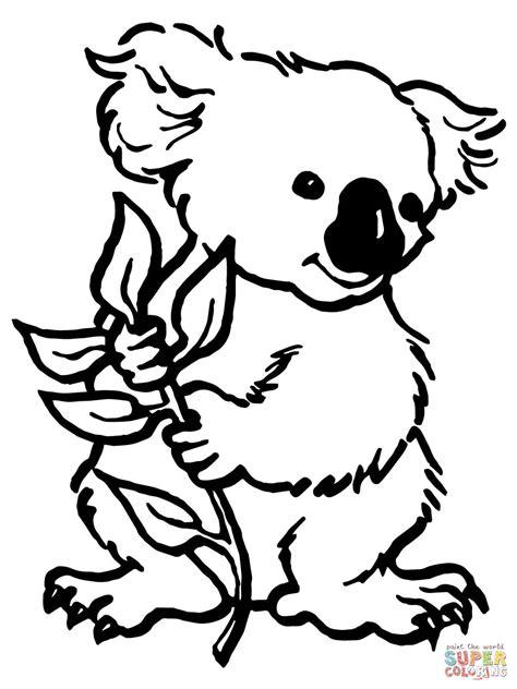 eucalyptus coloring page koala with eucalyptus leaf coloring page free printable