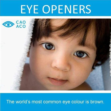 what is the most common eye color brown is the most common eye color eye bet you didn t