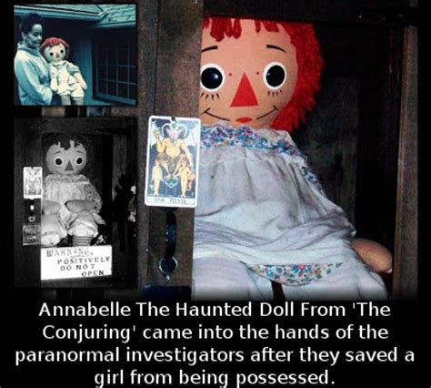 annabelle doll true facts did you that annabelle the haunted doll from the