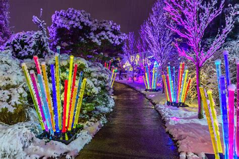 magic let it glow phipps conservatory and