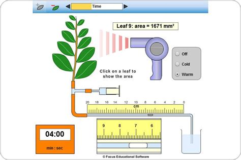 design experiment rate of transpiration transpiration experiment by focus educational software