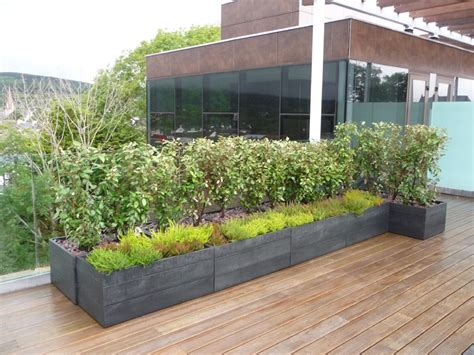 live roof edging movable modular planters and green walls from maximize