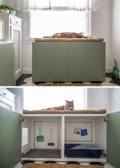 A Tiny Apartment A Sticky Litter Box by 25 Best Ideas About Cat Room On Small Cat