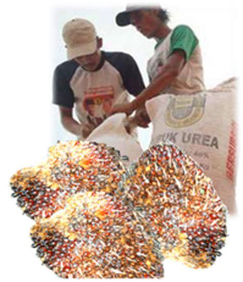 Pupuk Kalsium Untuk Sawit pertanian indonesia mandiri pemupukan kelapa sawit