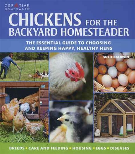 Backyard Chickens Grit Grit Chickens For The Backyard Homesteader