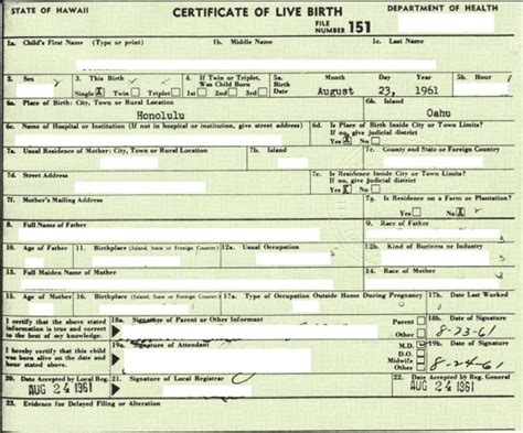fake birth certificate template free fake blank birth