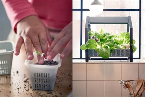 ikea indoor garden modern systems to help your herb garden thrive in small spaces