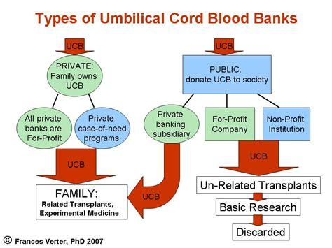 Types Of Mba School Cords by Keeping It Simple Kisbyto Cord Blood Awareness Month 2011