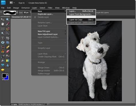 tutorial photoshop elements photoshop elements tutorial