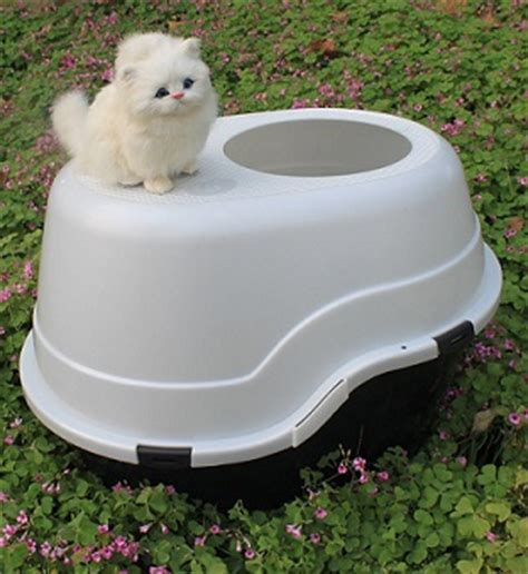 proof litter box the best proof litter boxes how to keep dogs out of cat litter