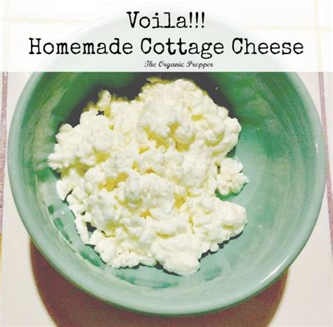 milk cottage cheese sour organic prepper