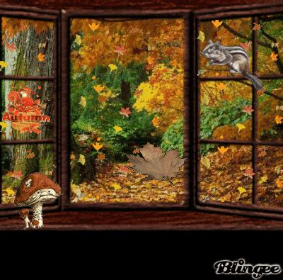 Herbst Fenster Bemalen by Herbstfenster Picture 102598999 Blingee