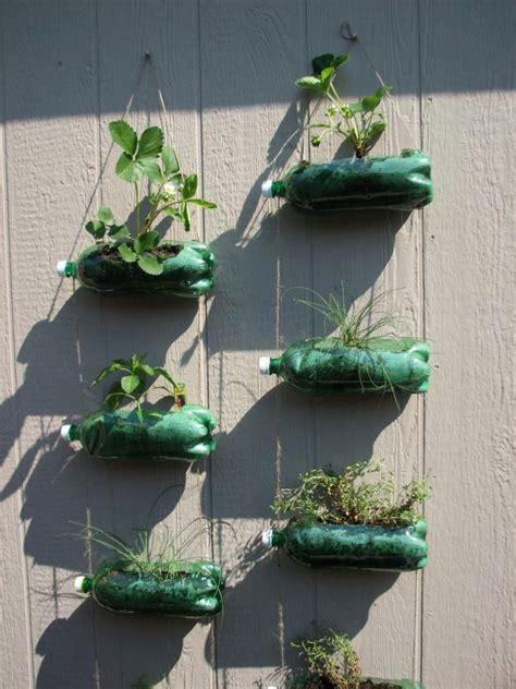 Pin By Suus Notenboom Noot Zo Swarte Noot On Grow Soda Bottle Garden Wall