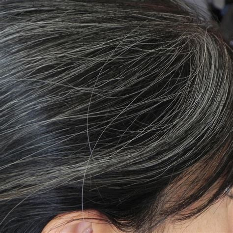 can gray hair turn black again how to restore gray hair to its true color with home