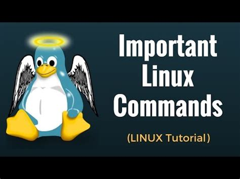 linux tutorial for beginners in hindi how to use ubuntu ubuntu tutorial for beginners
