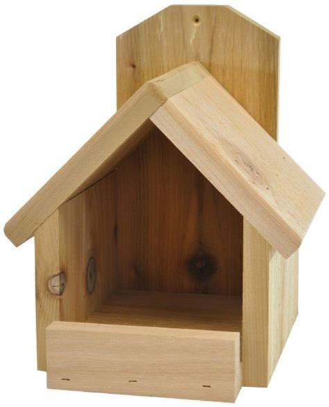 cardinal bird house bird nest box placement bird free engine image for user manual download