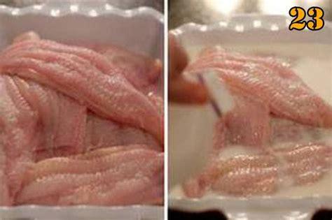 tips  mem fillet ikan lele sangkuriang komunitas budidaya lele sangkuriang