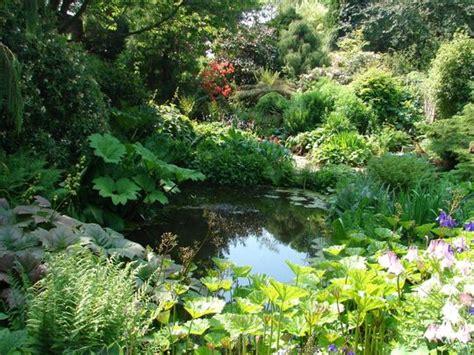 bide a wee cottage garden grows on you - Bide A Wee Cottage Gardens