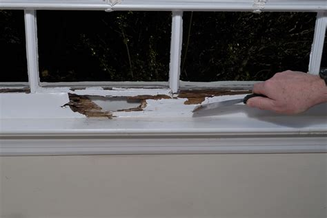 repair  rotted window sill   homes