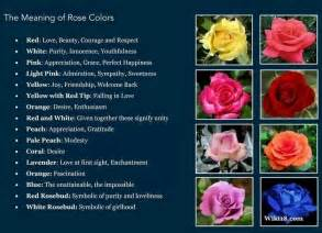 meaning of the color of roses meaning colors to