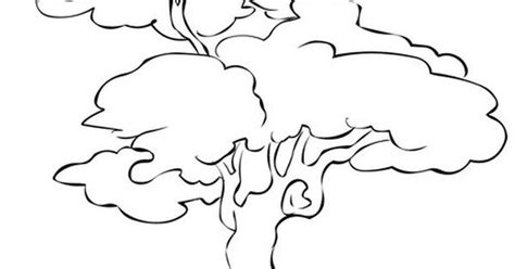 animals   trees coloring page  twistynoodle