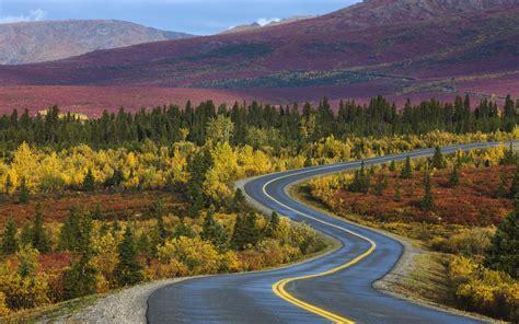 winding road through denali national park alaska in