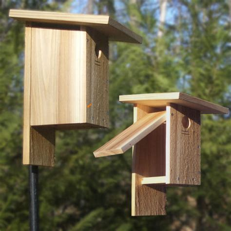 peterson bluebird house plans pdf peterson bluebird house plans pdf house design plans