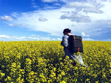 picture flower field summer woman agriculture