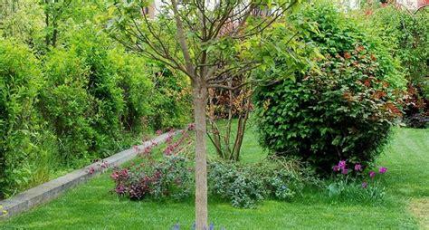 giardini di piccole dimensioni realizzare giardini progettazione giardini come