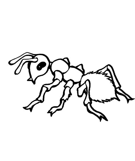 Ant Coloring Pages printable ant coloring pages coloring me