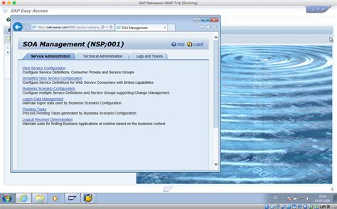 tutorial sap 2000 versi 11 pdf tutorial sap versi 14 how to enable soamanager in sap