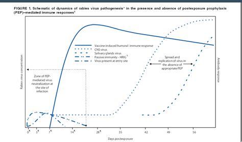 Serum Anti Rabies vaksin rabies dan serum rabies setelah gigitan anjing gila